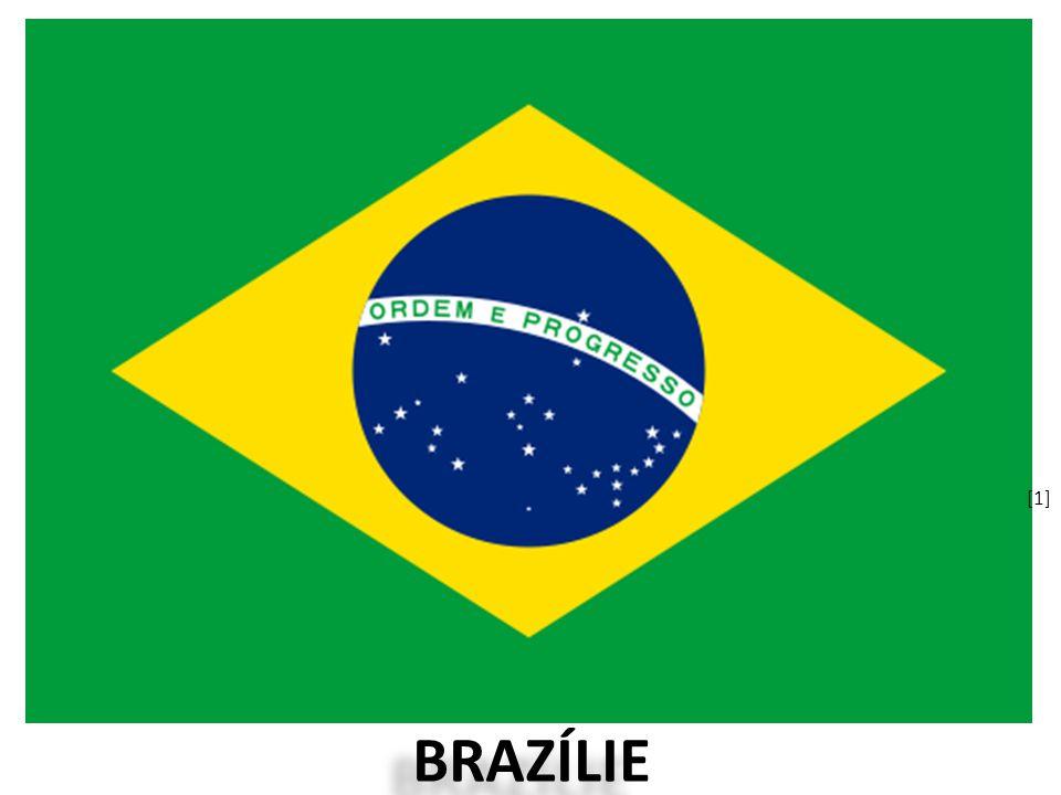 [1] BRAZÍLIE